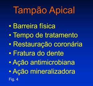 Tampão apical 3'